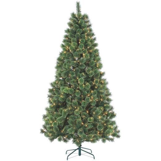Gerson 7 Ft. Cashmere Pine 550-Bulb Clear Incandescent Prelit Artificial Christmas Tree